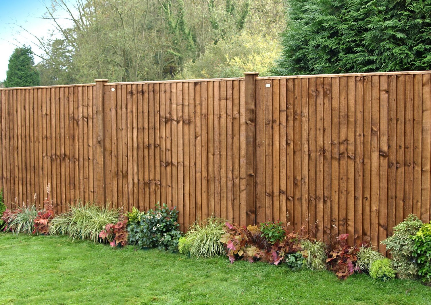 A photo of heavy duty closeboard fence panels in a garden