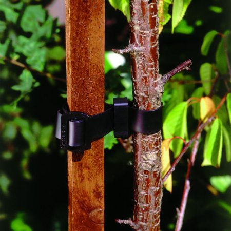 photo of CROPTEX Buckle Tie
