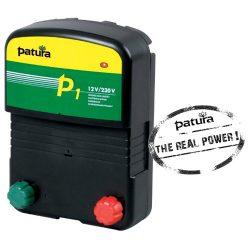 Photo of P1 Multi-voltage Energizer