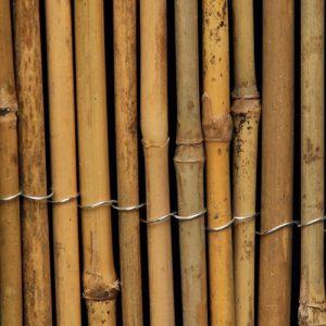 ExtraDex Whole Bamboo Screen