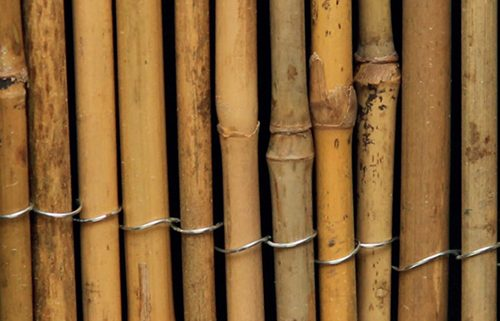 picture of ExtraDex Whole Bamboo Screen