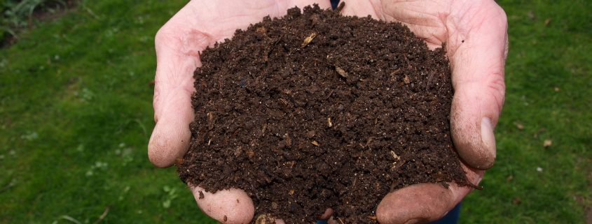 use Compost in the garden