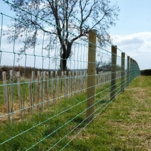Rylock Green Fencing for farms in a field