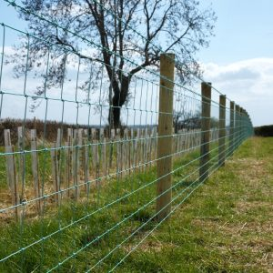 A photo of a Rylock Green Fence in a field