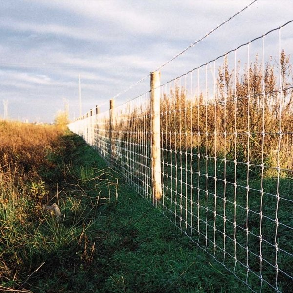 Rylock Green farm Fencing in a field